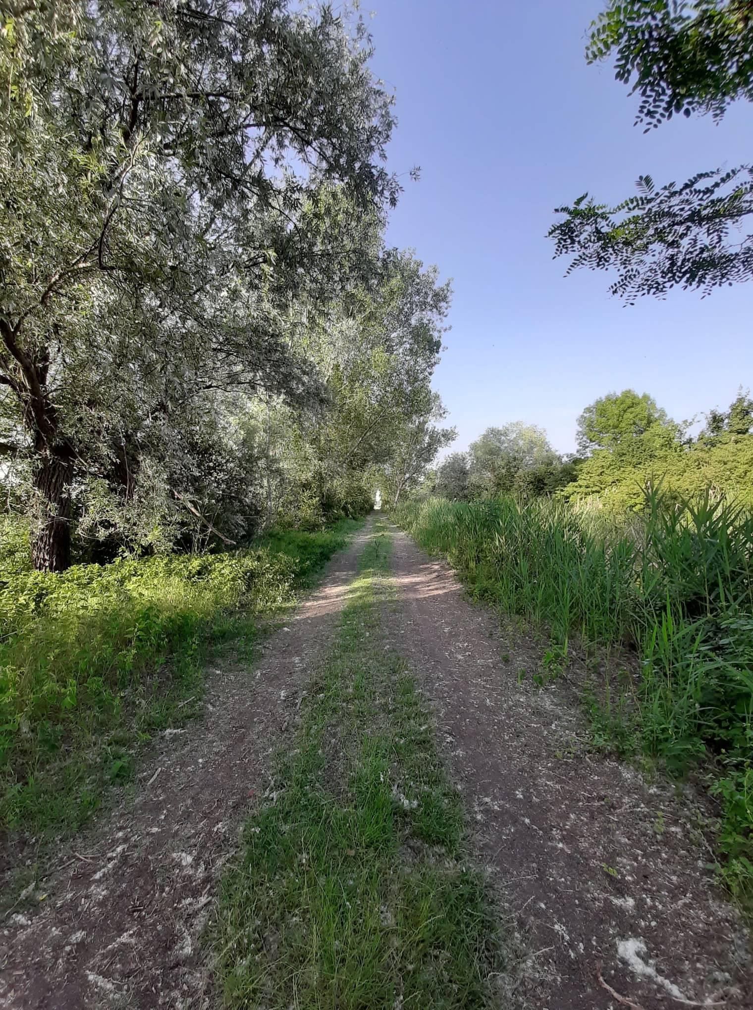 sentiero-cai-reggiolo